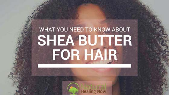 African Shea Butter For Curly Hair